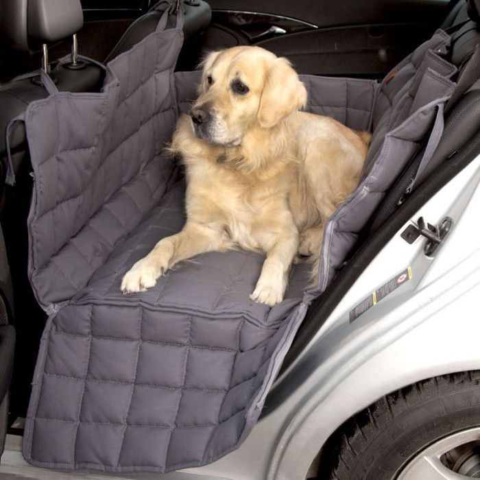 Doctor Bark 2-Car-Seat blanket
